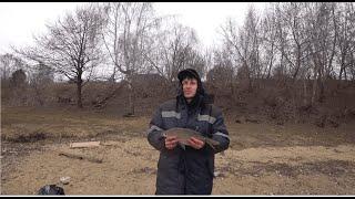 Рыбалка в кругу друзей. Москва река. Пахра река. Вновь лещ. Встреили добрую собаку. Панамафиш 8
