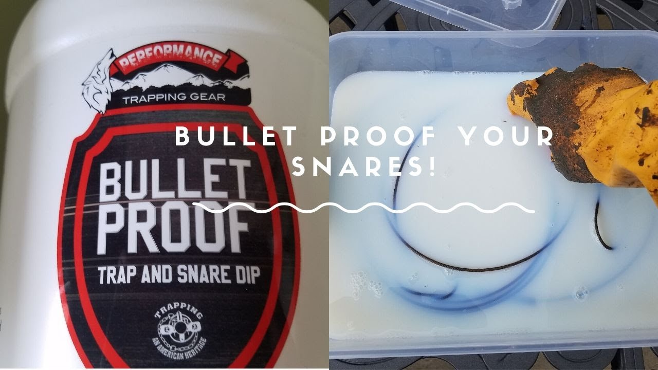 BulletProof Your Traps and Snares