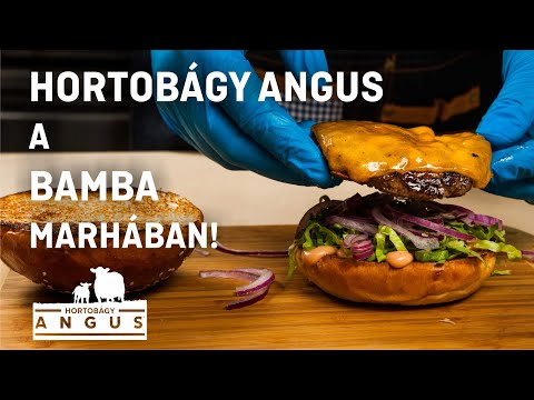 Hortobágy Angus a Bamba Marhában