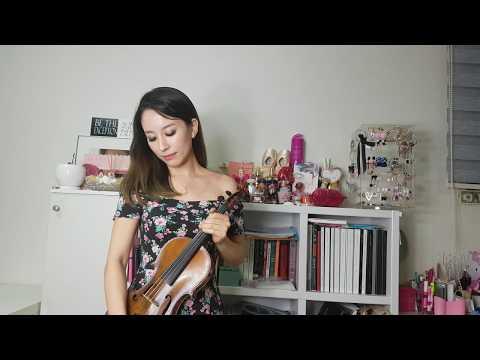 萬芳-新不了情小提琴版(Wan Fang-New endless love violin cover)
