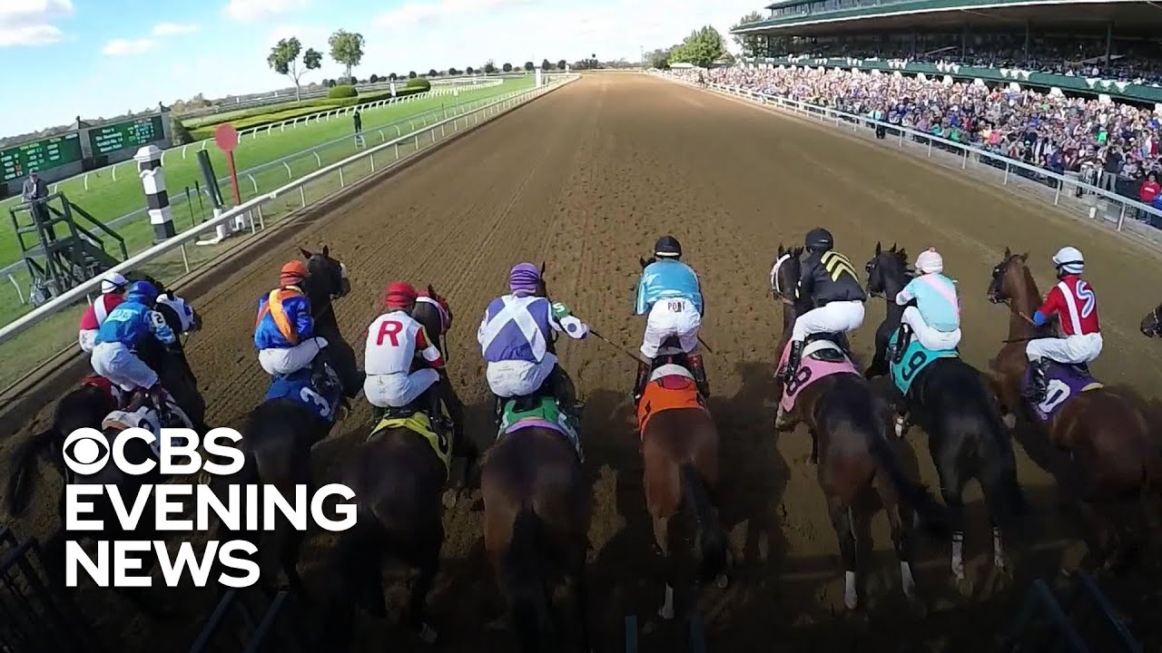Breeders' Cup 2019: What time is the race? Predictions, streaming ...