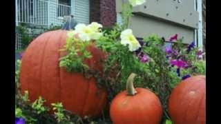 Door County Wisconsin - A Door County Fall!