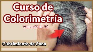 Cubrimiento de Cana y Rellenos de Color - Curso de Colorimetria video 02 de 10
