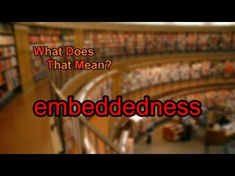 What does embeddedness mean?