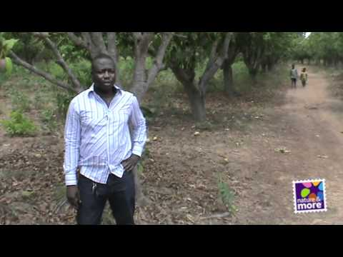 Nature and More Grower: Adama Zongo of Fruiteq