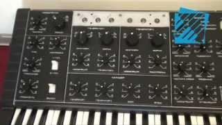 Klasyczne syntezatory analogowe  z wizytą w firmie Audiostacja