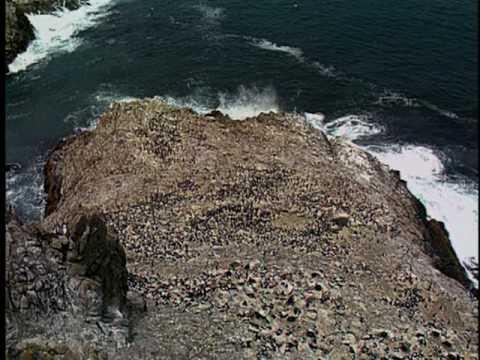 San Francisco Bay National Wildlife Refuge