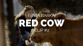 Red Cow (Para Aduma) - Tsivia Barkai Film Clip 2 (Berlinale 2018)