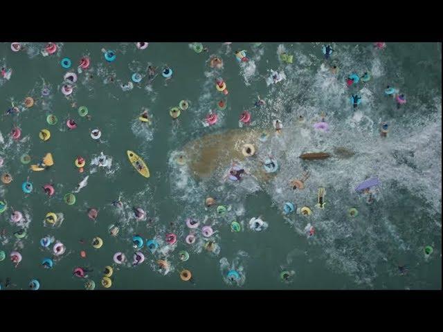 Megalodón - Trailer español (HD)