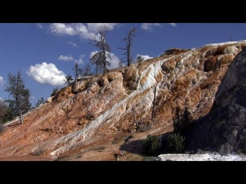Yellowstone National Park 1 of 2 1080p HD