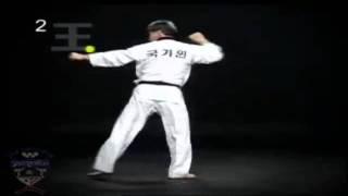 Poomse 2 Taegeuk Yi Jang [En Español][HD]
