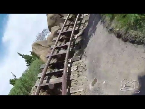 Seven Dwarfs Mine Train - Magic Kingdom - Walt Disney World Resort