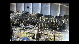 Photos From The Falklands War 1982 Part 2