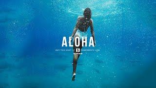 (SOLD) Dancehall Type Beat Aloha 2.0 Good Vibes Beat Instrumental