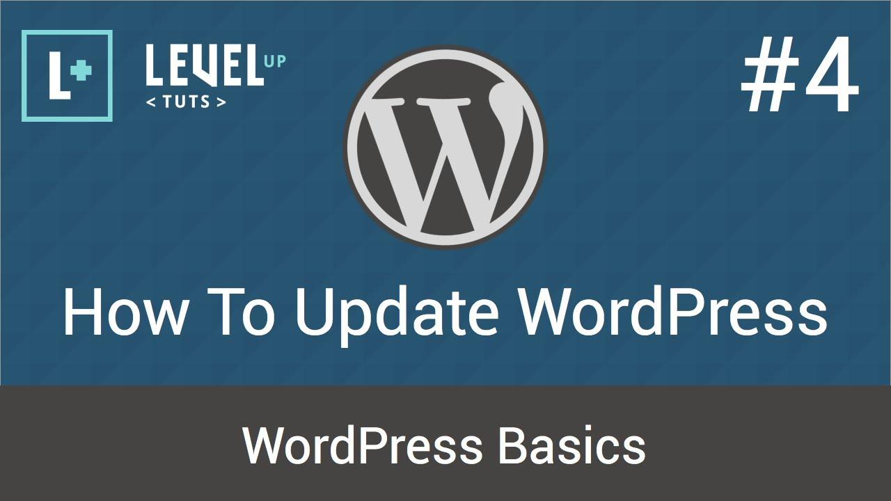 WordPress Basics #4 - How To Update WordPress - YouTube