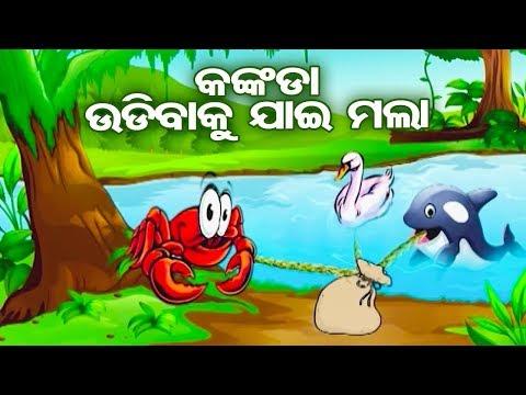 KANKADA UDIBAKU JAAE MALAA (କଙ୍କଡା ଉଡିବାକୁ ଯାଇ ମଲା) | Aaima Kahani Series - Cartoon Movie
