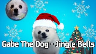 Gabe The Dog - Jingle Bells