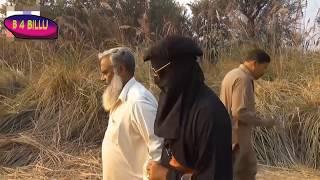 Latest Punjabi Funny Clip     Majeed Kirla Baba ta Run New clip