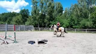 Michał Tinker horse jump 19.06.16