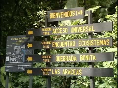 Un parque para todos sendero de acceso universal en for Para desarrollar un parque ajardinado