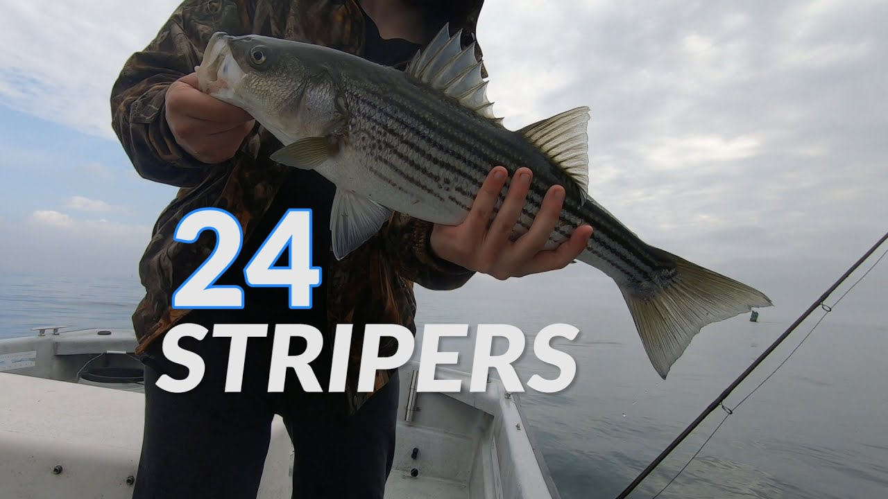 Stripers on the Fly and Light Tackle in Block Island Sound