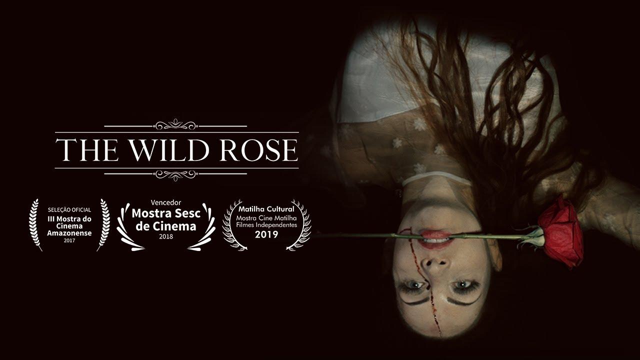 Resultado de imagem para wild rose manaus
