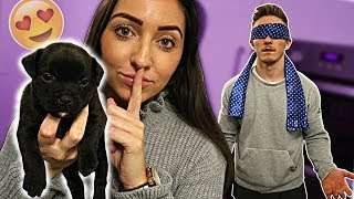 Got my Boyfriend a Puppy for His Birthday! {PRANKED}