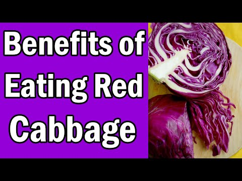 7 Benefits of Eating Red Cabbage [They Will Shock You]