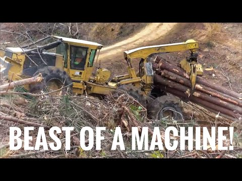 Extreme logging- getting creative in tough ground