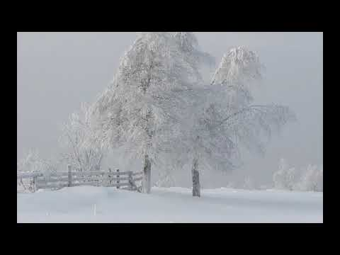 Interesting winter pictures part 15