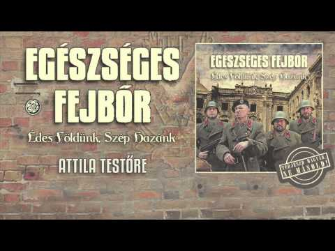 Egészséges Fejbőr - Attila Testőre (hivatalos Szöveges Video / Official Lyrics Video)