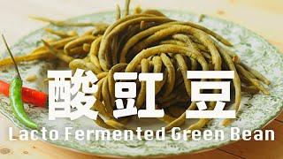 【Eng Sub】酸豇豆 酸豆角 天然發酵 夏日去濕開胃菜 肉末炒酸豇豆  Lacto Fermented Green Bean Recipe