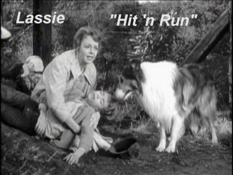 """Download Lassie - Episode #350 - """"Hit'n'Run"""" - Season 10, Ep.27  - 04/19/1964"""
