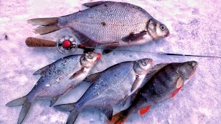 РЫБАЛКА на ЧЁРТИК Первый лёд рыбалка на безмотыльную мормышку