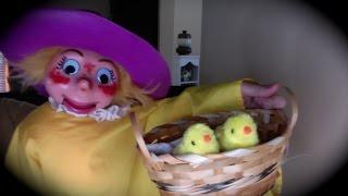 Spring Is Here  Patsy Hoolahan