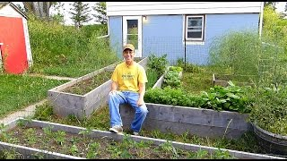 Organic Gardening Tips!