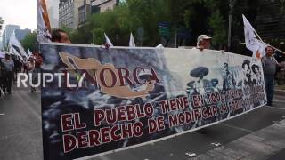 Mexico: 10,000 march over gas price hike in Mexico City