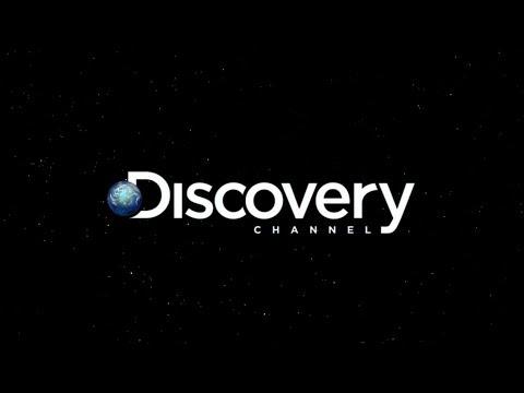 Amazing Orange Animal - Discovery Animals