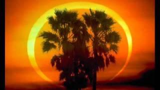 Paul Oakenfold Feat. Matt Goss-Firefly (Nat Monday Remix)