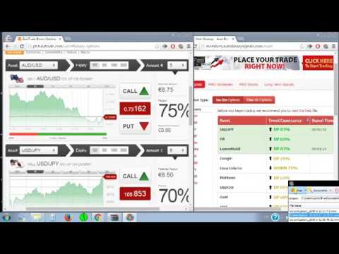 Binary options trading platform - Broker Ayrex