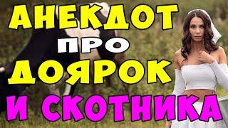 Анекдот про Доярок и награду для Скотника shorts Самые смешные свежие анекдоты