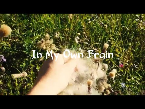 The Paper Flowers - In My Own Brain (Lyrics)