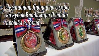 Японские самбисты соревнуются за кубок Путина / 2019プーチン大統領杯 全日本サンボ選手権大会 / JAPAN SAMBO CHAMPIONSHIP
