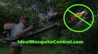 Mosquito Control ► Ideal Mosquito Control