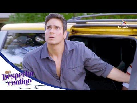 Pablo sale del hospital en busca de Maia   Despertar contigo - Televisa