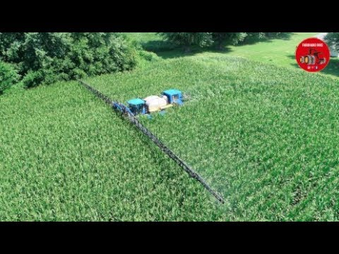 Spraying Fungicide in Tall Corn with a New Holland SP 345 Sprayer