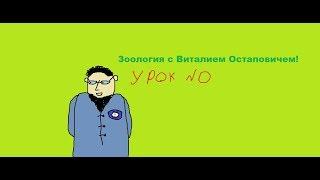 Вводный курс зоологии (С Виталием Остаповичем!)