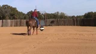 Cutting Horse working a Pro Cutter with Ball animation