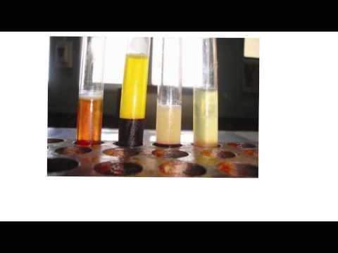 Blood4-Plasma vs Serum