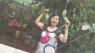 Trần Thị Hiền Lành-Môi Tím- Kiều Nga